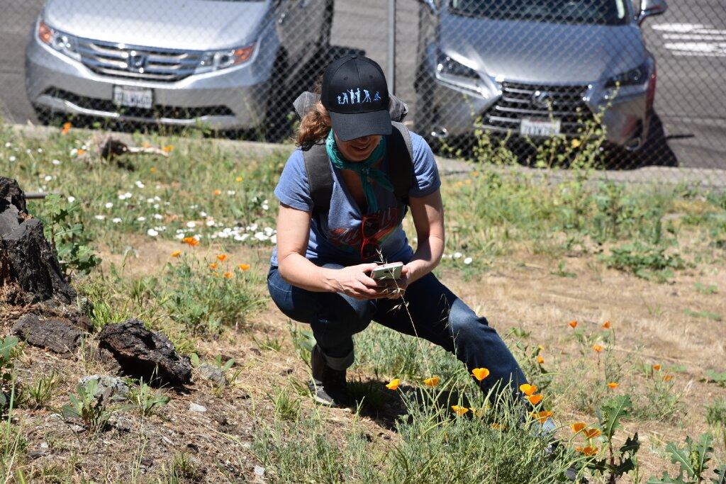 Jennifer captures a Poppy